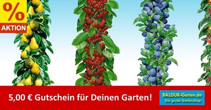 5,00 Euro Baldur Garten Gutscheincode